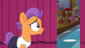 Tender Taps approaching the curtain S6E4.png