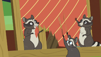 Family of raccoons tearing Dandy's curtains S7E5