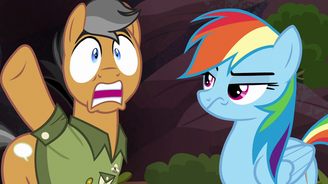 "File:Quibble ""what are these ponies thinking?!"" S6E13.png"