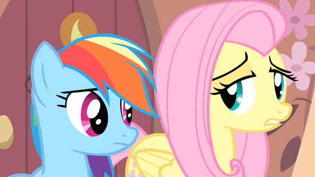 File:Fluttershy '...it's not something I take lightly' S4E07.png
