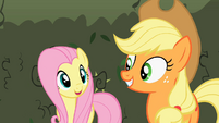 Fluttershy and Applejack smiles S2E01