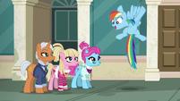 "Rainbow Dash ""it's a race!"" S6E9"