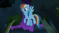 Rainbow Dash hovering S4E04