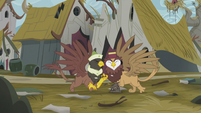 Two griffons acidentally hit each other S5E8