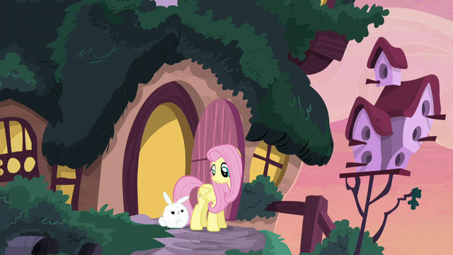 File:Fluttershy looking at Angel S5E3.png