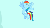 "Rainbow Dash ""exactly!"" S4E12"