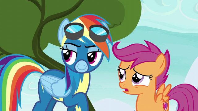 "File:Scootaloo ""what are we doing up here"" S6E7.png"