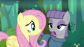 "Maud ""I was looking at the rock"" S4E18.png"