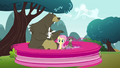 Pinkie Pie clone zooming around the picnic S3E3.png