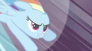 Rainbow Dash 'Best. Wedding.' S2E26