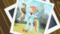 Picture of Rainbow Dash with the falcon S2E07.png