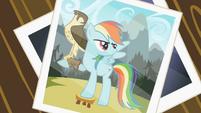 Picture of Rainbow Dash with the falcon S2E07