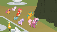 Twist Cutie Mark Crusaders Cheerilee's Class S2E1