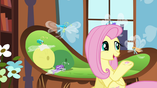 File:Fluttershy offering hoof-knitted sweater S4E16.png