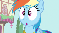 Rainbow Dash no words S3E13