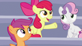 "Apple Bloom ""show's about to start"" S7E7.png"