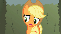 Applejack mistrustful of apple heaps S2E01
