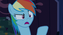 "Rainbow Dash ""you can't just go around"" S6E15"