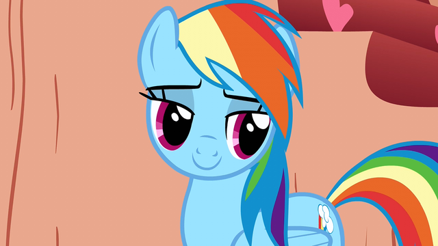 File:Rainbow Dash looking confident S1E16.png