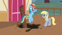 Rainbow Dash shouting at Derpy S2E14