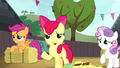 Apple Bloom asks if they can stop cleaning S5E6.png