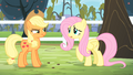 Fluttershy '...it might take some time...' S4E07.png