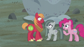 Pinkie declares Mac and Marble team one S5E20.png