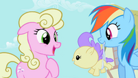 Rainbow Dash Returning Baby To Mother S2E08