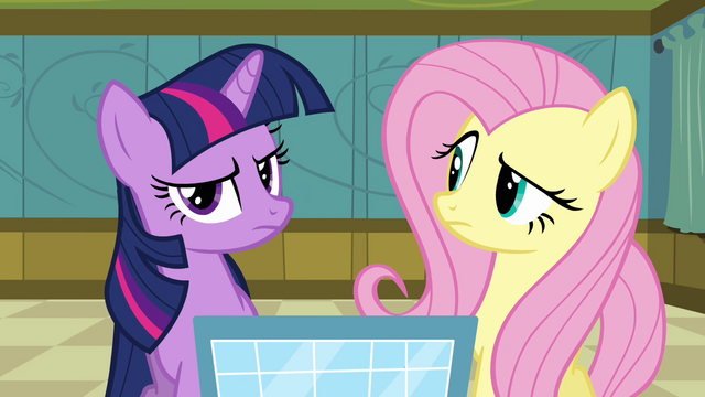 File:Twilight and Fluttershy puzzled S2E16.png