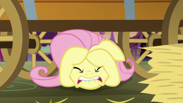 File:Fluttershy hiding under the hay cart S5E21.png