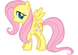 Fluttershy promotional 1