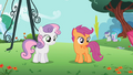 Scootaloo and Sweetie Belle looking S2E06.png
