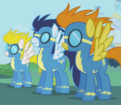 The Wonderbolts.png