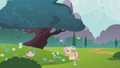 Fluttershy picking flowers S1E10.png