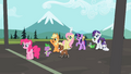 Ponies waiting at the finish line S2E7.png
