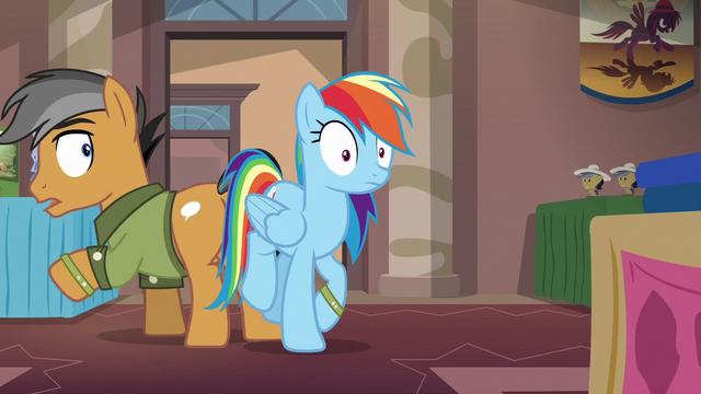 File:Rainbow Dash bumps into Quibble Pants S6E13.png