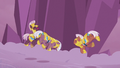 Royal guards tripped up by Sombra's spire S5E25.png