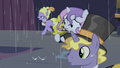 Sweetie sees ponies running away S4E19.png