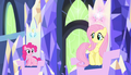 Fluttershy agrees with everyone S5E01.png