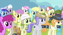 Ponies looking S4E20