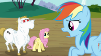 Rainbow 'remind you how much I' S4E10
