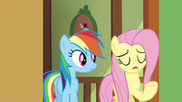 Fluttershy starts to sing S6E11