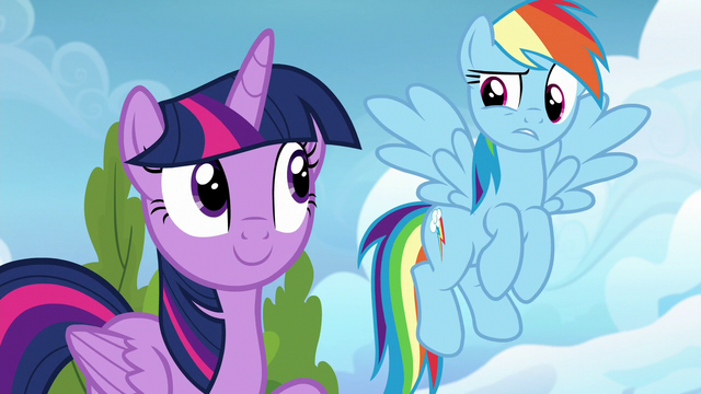 """File:Rainbow Dash confused """"we can?"""" S6E24.png"""