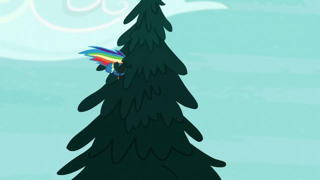 File:Rainbow flies into a tree S6E7.png