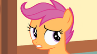 Scootaloo is about to scream S1E23