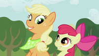 Applejack and Apple Bloom grinning S2E05