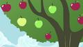 Apple tree shaken S4E13.png