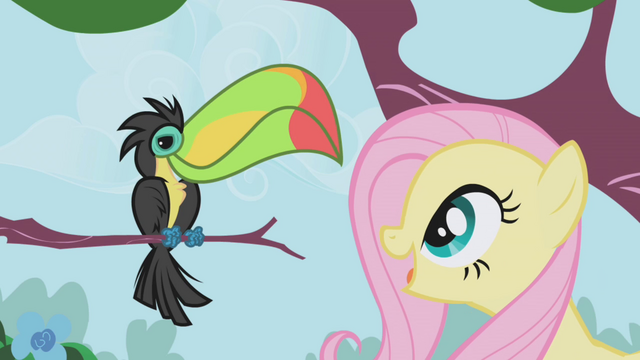 File:Fluttershy looks at a Toucan S1E03.png