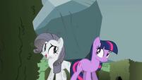 Twilight helping Rarity carry the boulder S2E01