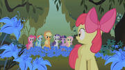 Applejack and friends looking at Apple Bloom S1E09.png